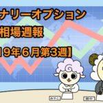 バイナリーオプション投資相場週報【2019年6月第3週】