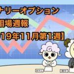 バイナリーオプション投資相場週報【2019年11月第1週】
