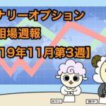 バイナリーオプション投資相場週報【2019年11月第3週】