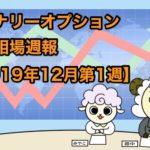 バイナリーオプション投資相場週報【2019年12月第1週】