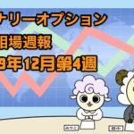 バイナリーオプション投資相場週報【2019年12月第4週】